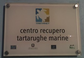 Targa Centro Recupero Tartarughe Marine